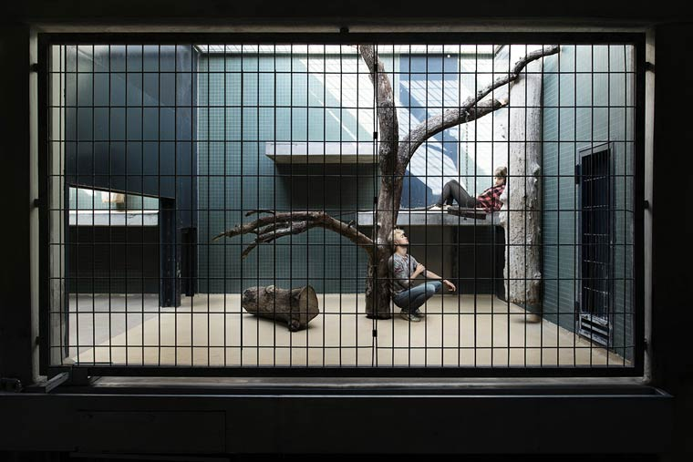 Patrice-Letarnec-Human-Zoo-3